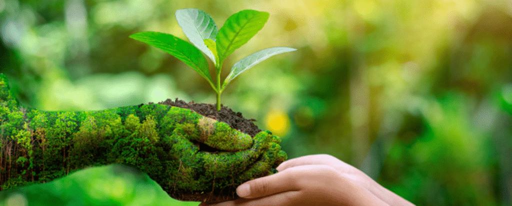 grupo-boticario-sustentabilidade.png